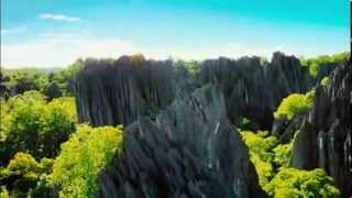 Island of Lemurs Madagascar TRAILER I like to move it King Julien