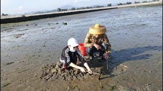 小渔翁带儿子去赶海,在沙子下面挖了好多靓海货,全拿来送给朋友