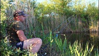 Рыбалка на карпа на кукурузу.Первый летний клёв 2018