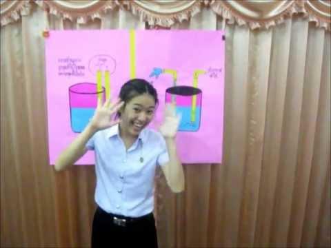 การทดลองวิทย์ ป.4-6