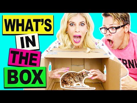 What's In The Box Challenge Gone Wrong  *Live Animals*