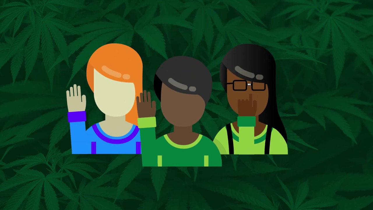 Job Creation | The National Cannabis Industry Association