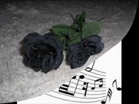 Nervos á flor da pele Roberta Miranda.wmv