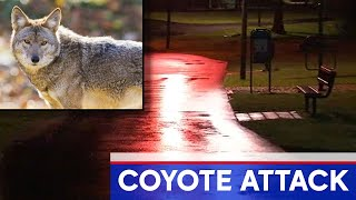 Coyote suspected of attacking mom and child in NJ park