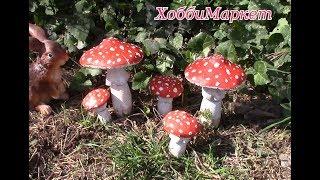 Как сделать грибы мухоморы. ХоббиМаркет
