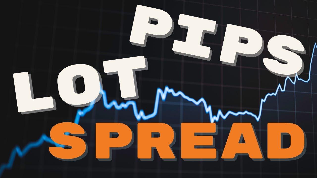 สอน Forex : PIP SPREAD LOT คืออะไรใน Forex