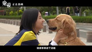 吴磊张子枫《宠爱》花絮(于和伟/吴磊/张子枫)【预告片先知】