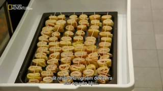 Download Video Mega Food - Catering To Fashion Full Documentary MP3 3GP MP4