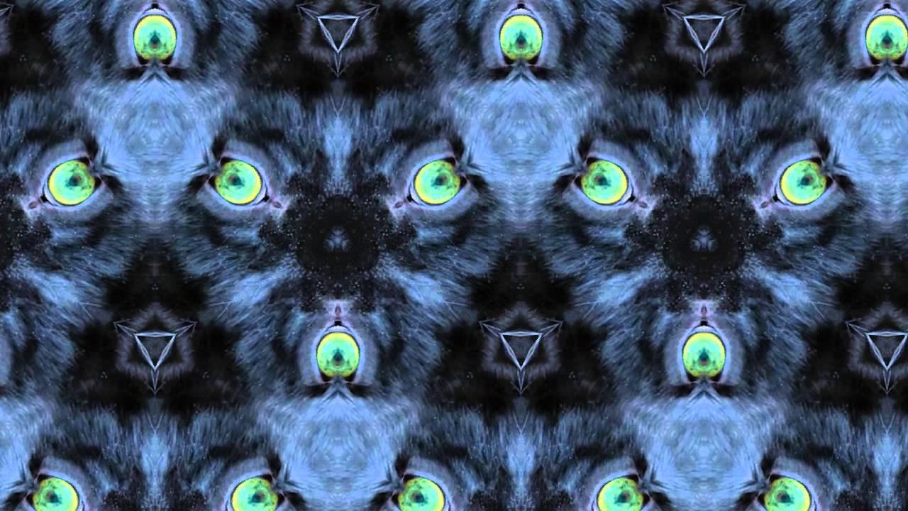 Black panther fur patterns lovely screensaver 2015 youtube - Black screensaver ...