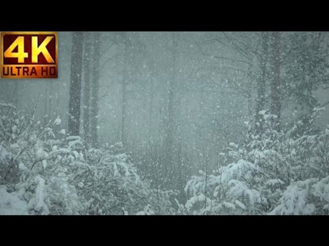 4K Relaxing Snowfall 2 HOURS of Beautiful Falling Heavy Snow - The Best Relax