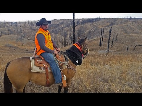 Deer Hunting On Public Land (Pine Ridge, Nebraska)