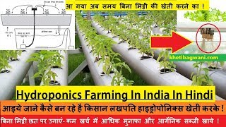 बिना मिट्टी की खेती | Hydroponics Farming | हाइड्रोपोनिक्स खेती कैसे करे |जलकृषि