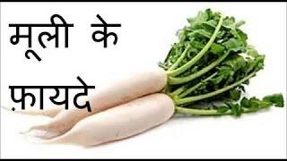 मूली के फायदे | Health Benefits Of Raddish-Ayurvedic use Raddish (Muli)-Mooli Khane ke Faide