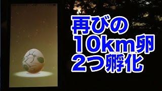 【ポケモンGO攻略動画】10キロ用のタマゴの孵化瞬間を実況