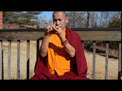 buddhist single men in nelson county The bodhi monastery is located on 188 acres of woodlands in sussex county, new jersey the aim of this monastery is to promote buddhism as an integrated whole, rather than breaking the teachings into a particular sect.