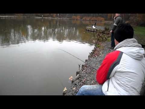 La pêche russe sur quoi attraper moskva le centre