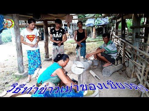 วิธีทำข้าวเม่าของชาวไตเชียงตุง How to cook Shan traditional rice in Keng Tung EP  69