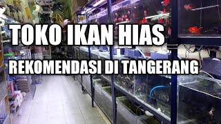 Pisces Aquarium Tangerang Lagu Mp3 Download - Download ...