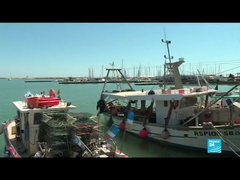 Italy's fishermen battle the scourge of plastic in the Mediterranean