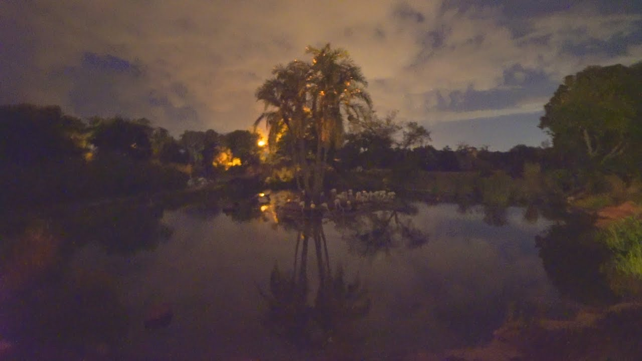 Kilimanjaro Safaris (Nighttime) Animal Kingdom - Walt Disney World