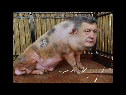 ПОРОШЕНКО 4 -наказание для Украины, приколы, юмор, шаржи, демотиваторы,Подборка 4, POROSHENKO 4,ТОР1
