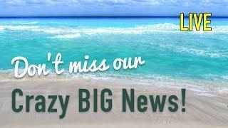 Surprise Last Minute Cruise News - It's Cool! thumbnail