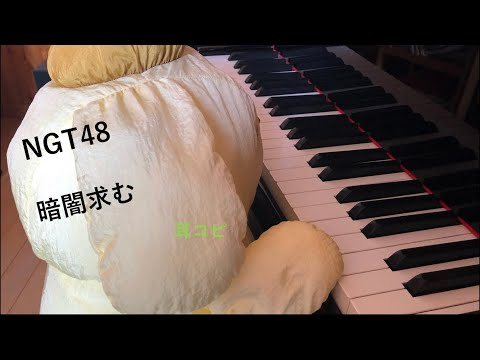 暗闇求む / NGT48 / 「青春時計」カップリング / (即興)
