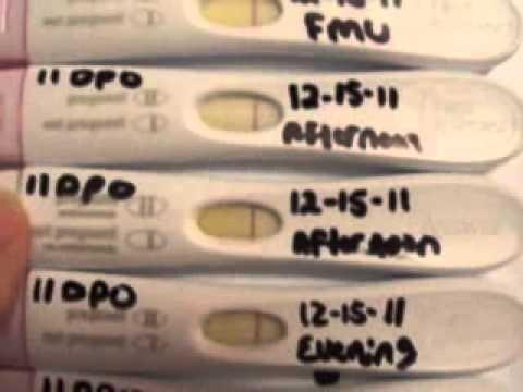 Pregnancy test progression so far