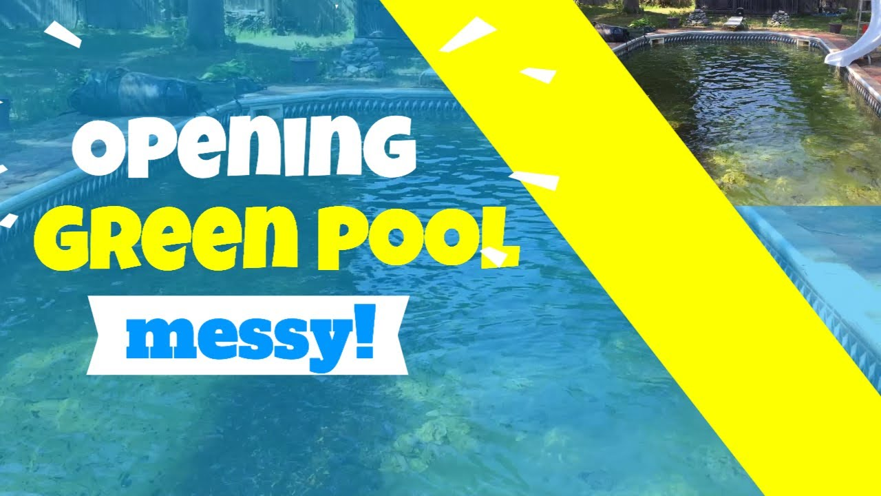 Opening Green Algae Swimming Pool Youtube