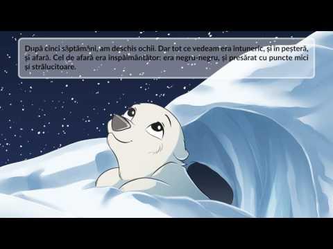 Fram, ursul polar versiunea pentru 2016