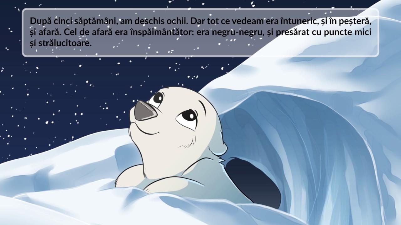 Fram Ursul Polar Versiunea Pentru 2016