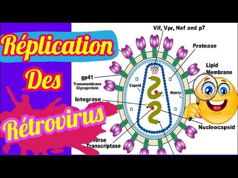 La Réplication de rétrovirus [[ Biologie Moléculaire ]]