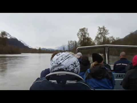 Lynn Canal Exursion Alaska