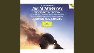 Haydn: Die Schöpfung Hob. XXI:2 / Erster Teil - 2. Arie mit Chor: Nun schwanden vor dem...