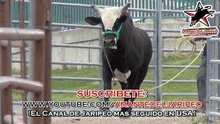 ***EN TIERRAS NUEVAS*** #RLT en OGDEN, UTAH (1080p HD) thumbnail