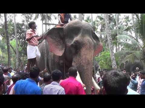 Cherpulassery Rajasekharan Height