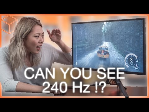 144Hz vs 240Hz - Can you see the difference? ft  ASUS PG258Q Gaming