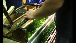 Как создаются граненые бусины в Чехии