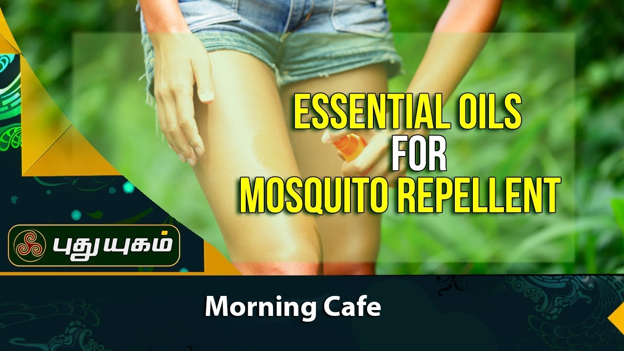 How To Use Essential Oils To Keep Mosquitoes Away Morning Cafe