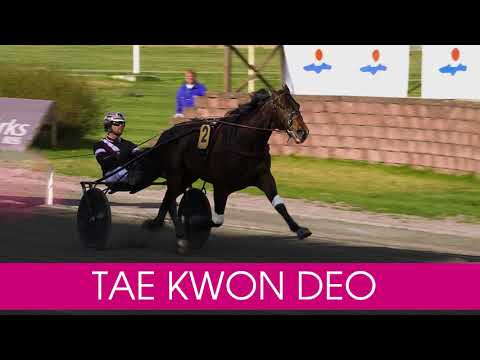 Välkommen till Elitloppet 2020 Tae Kwon Deo!