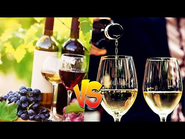 Yarra Valley Wine versus French Wine || Who Wins?