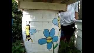 пчели/отводка/