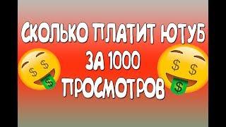 СКОЛЬКО ПЛАТИТ ЮТУБ ЗА 1000 ПРОСМОТРОВ 2018 заработок на ютубе