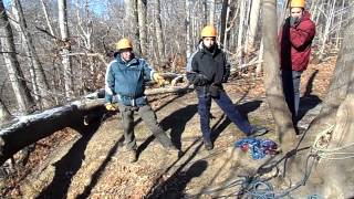 Bayshore Search and Rescue Ground Search Drill
