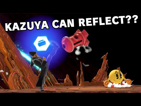 Ridiculous Reflections in Smash Ultimate 17