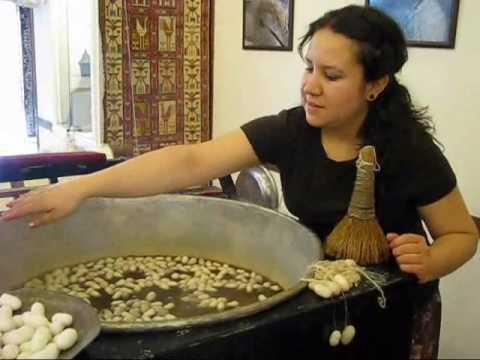 Silk Thread from Silkworm Cocoons