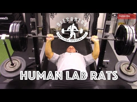 BREAKING IN THE GYM | HUMAN LAB RATS | VLOG #1