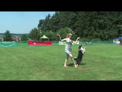 Dogdance Mariazell, Dancing Queen Lizzy