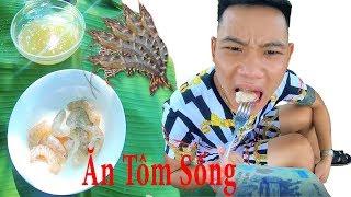 PHD | Thử Thách Ăn Tôm Sống | Shrimp