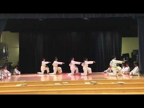 Pickering Valley Elementary School International Night 2017 TaeKwonDo Demo- Eagle TaeKwonDo-4